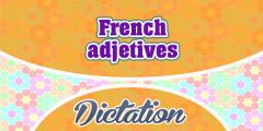 French Adjectives (Sentences)