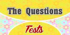 The Questions Words French Test