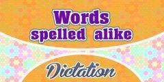 Words spelled alike (Sentences)