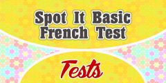 Spot It Basic French Test