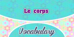 Le corps – The body