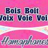 Homophones Bois Boit Voix Voie Voit