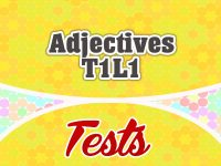 Adjectives T1L1 French Test - French Circles